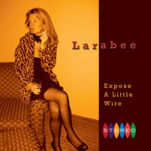 "Larabee ""Expose a Little Wire"""